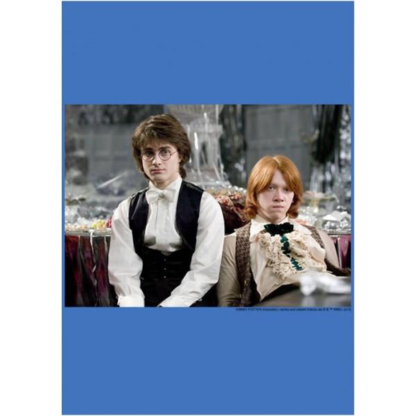 Harry Potter™ Harry Potter Harry and Ron Fleece Graphic Hoodie